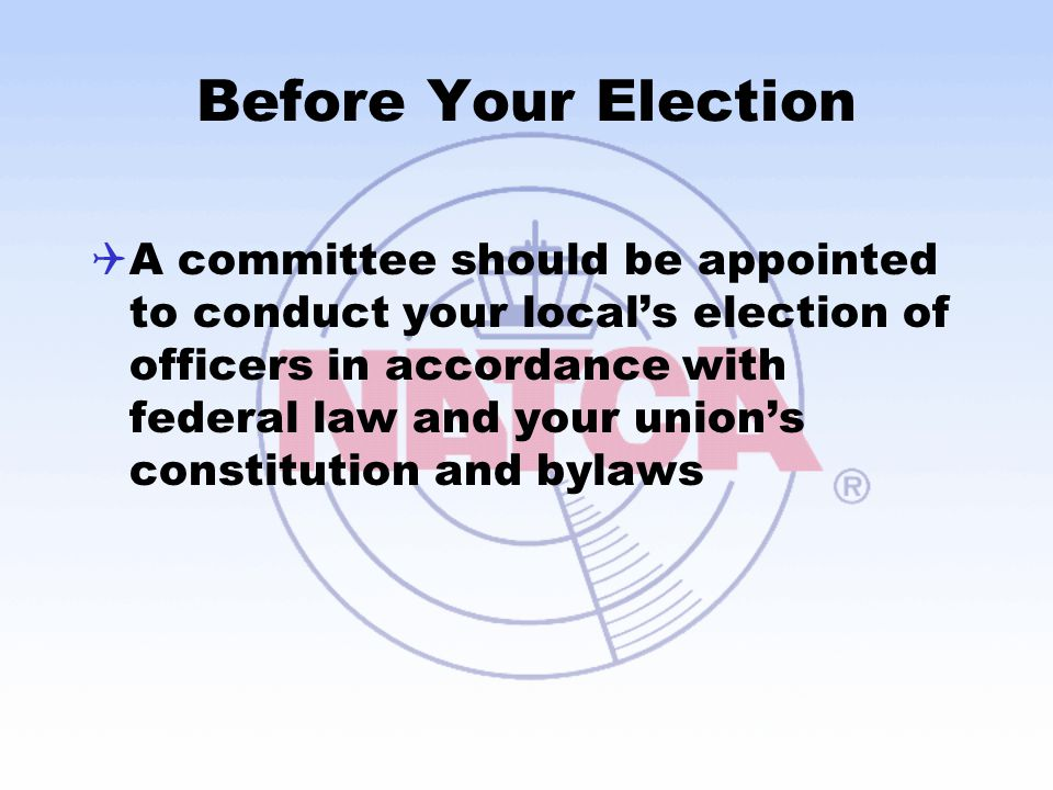 Before Your Election