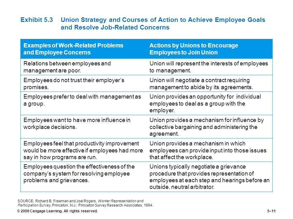 Exhibit 5.3 Union Strategy and Courses of Action to Achieve Employee Goals and Resolve Job-Related Concerns