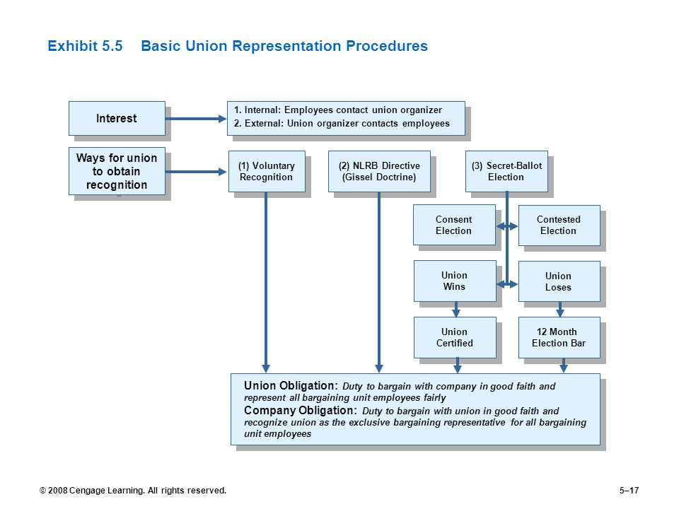 Exhibit 5.5 Basic Union Representation Procedures
