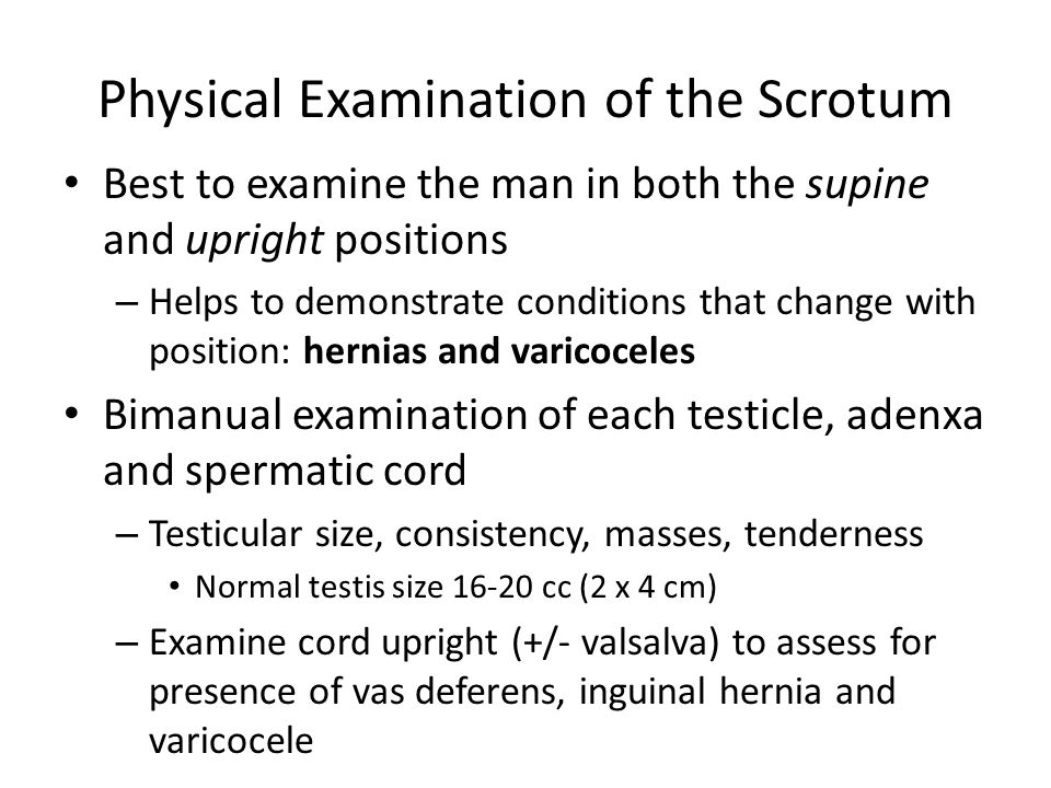 Physical Examination of the Scrotum