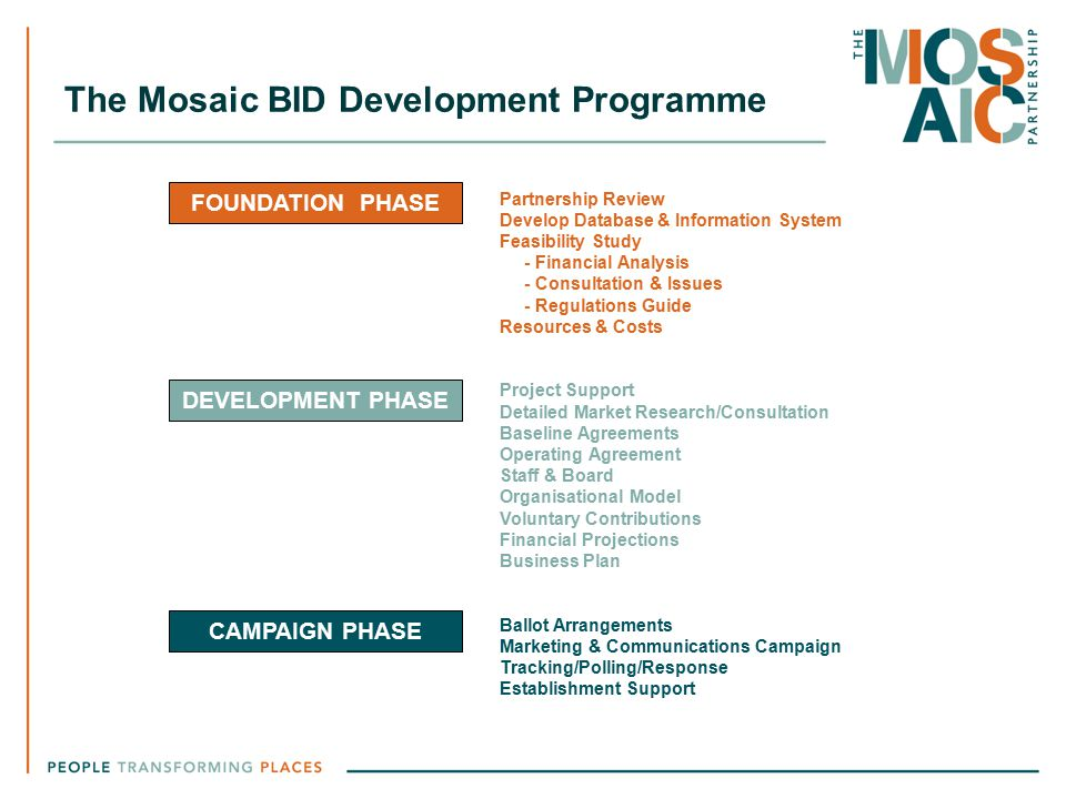 The Mosaic BID Development Programme