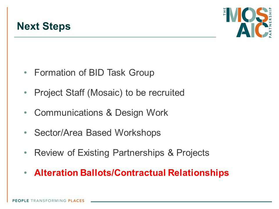 Next Steps Formation of BID Task Group