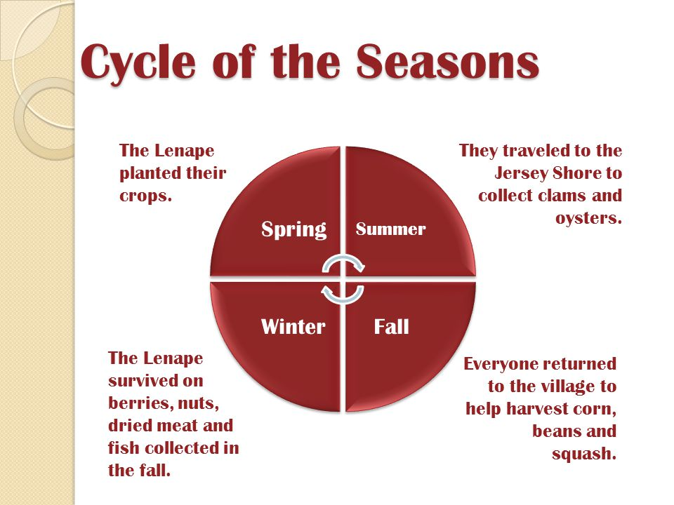 Cycle of the Seasons Spring Fall Winter Summer