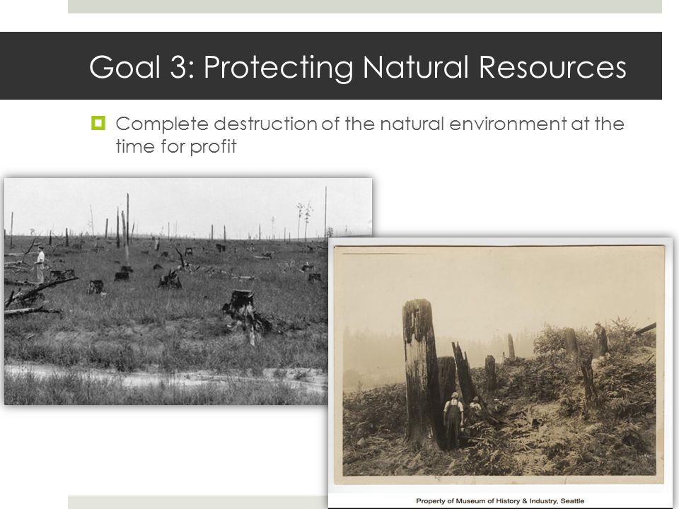 Goal 3: Protecting Natural Resources