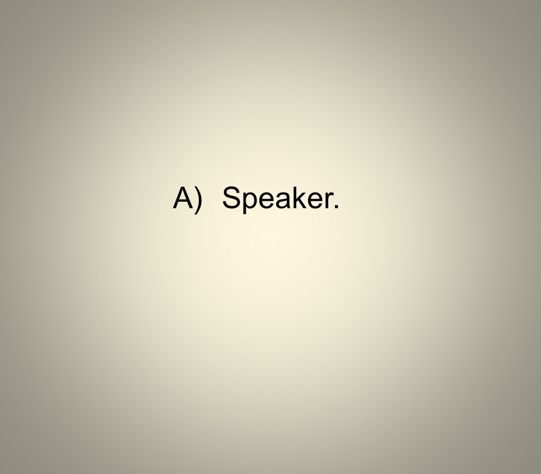 A) Speaker.