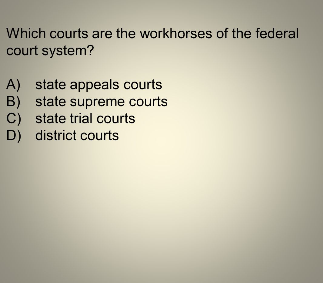 Which courts are the workhorses of the federal court system