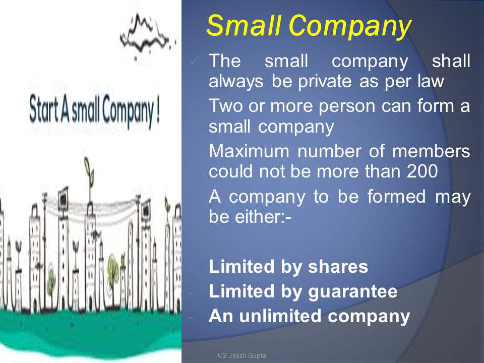 Small Company The small company shall always be private as per law
