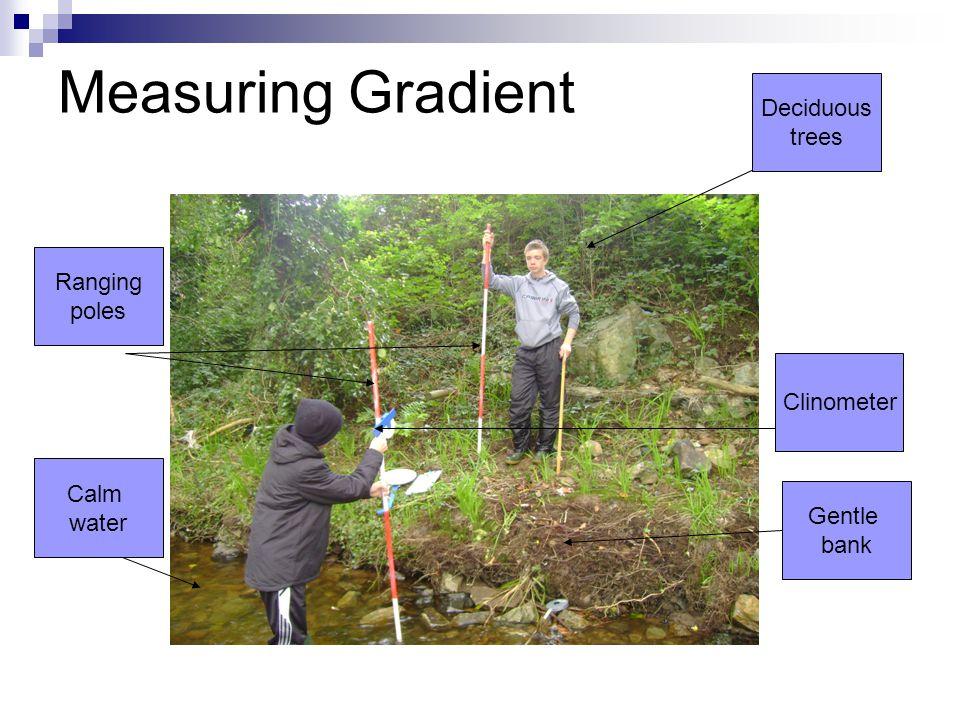 Measuring Gradient Deciduous trees Ranging poles Clinometer Calm water