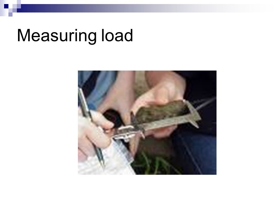 Measuring load
