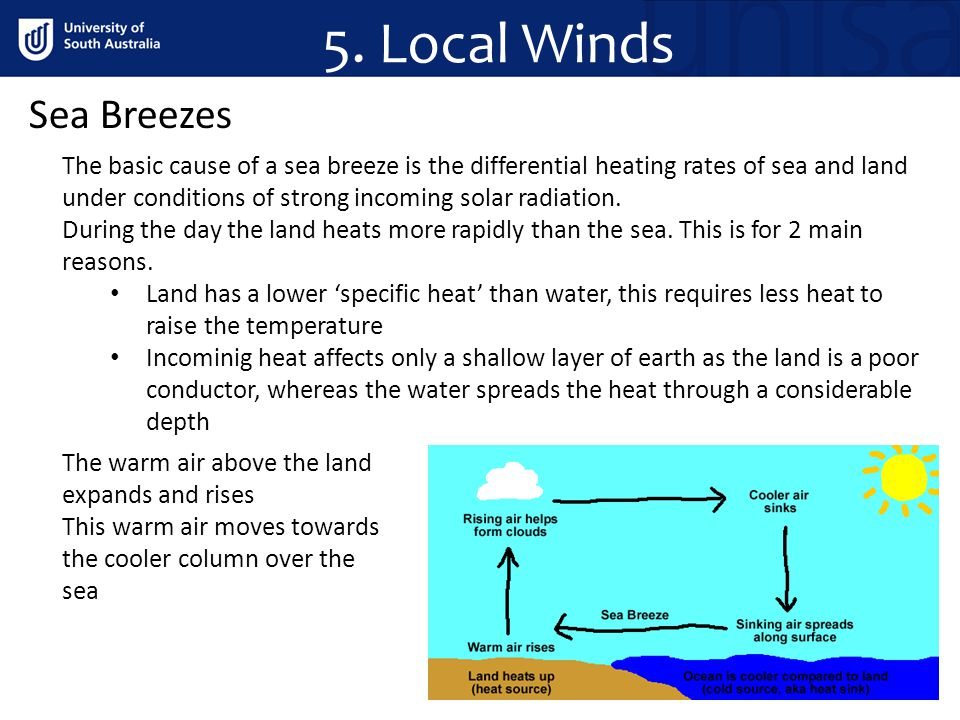 5. Local Winds Sea Breezes