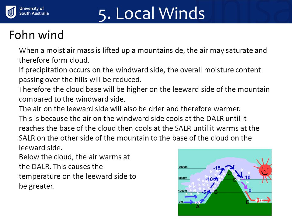 5. Local Winds Fohn wind. When a moist air mass is lifted up a mountainside, the air may saturate and therefore form cloud.