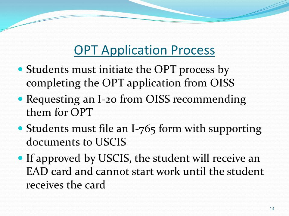 OPT Application Process