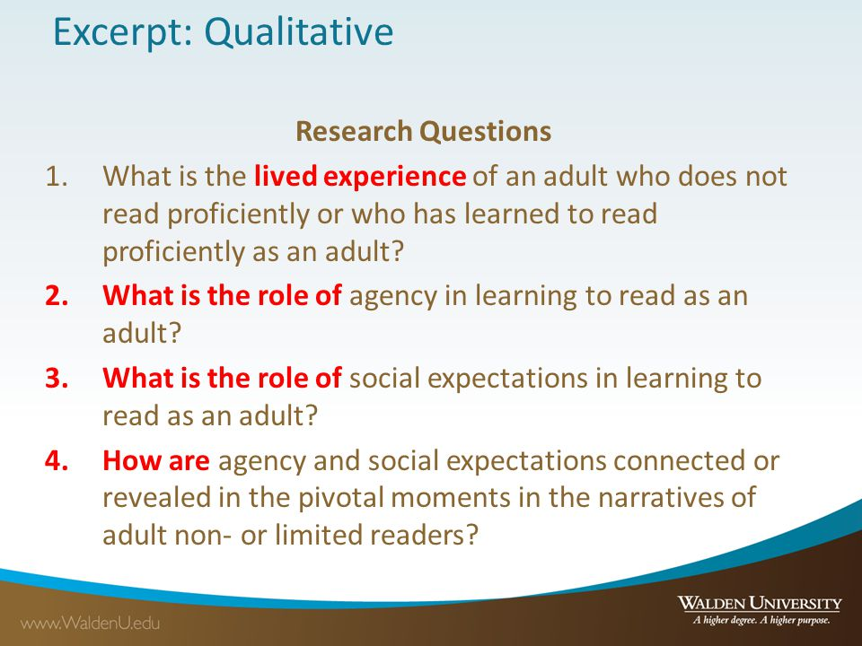 Excerpt: Qualitative Research Questions