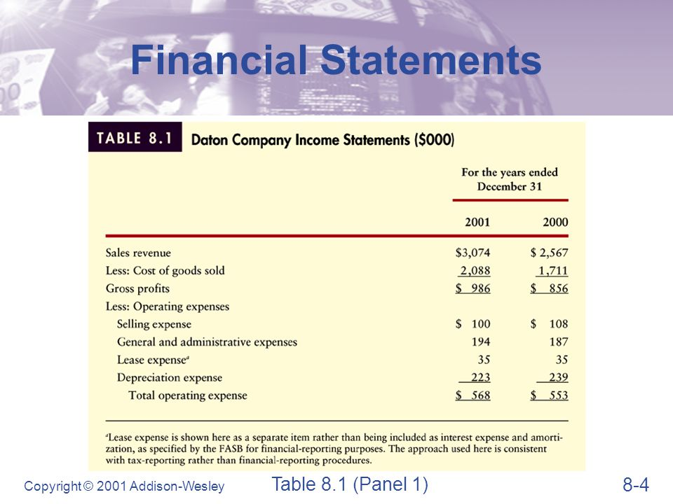 Financial Statements Table 8.1 (Panel 2)