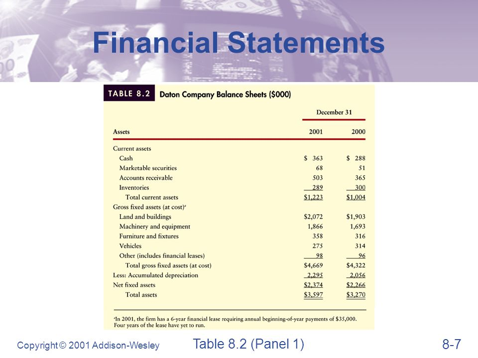Financial Statements Table 8.2 (Panel 2)