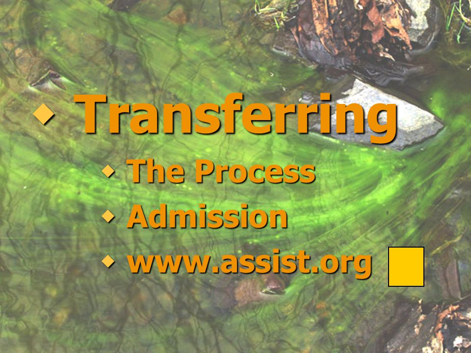 Transferring The Process Admission www.assist.org