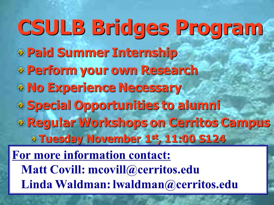 CSULB Bridges Program Paid Summer Internship Perform your own Research