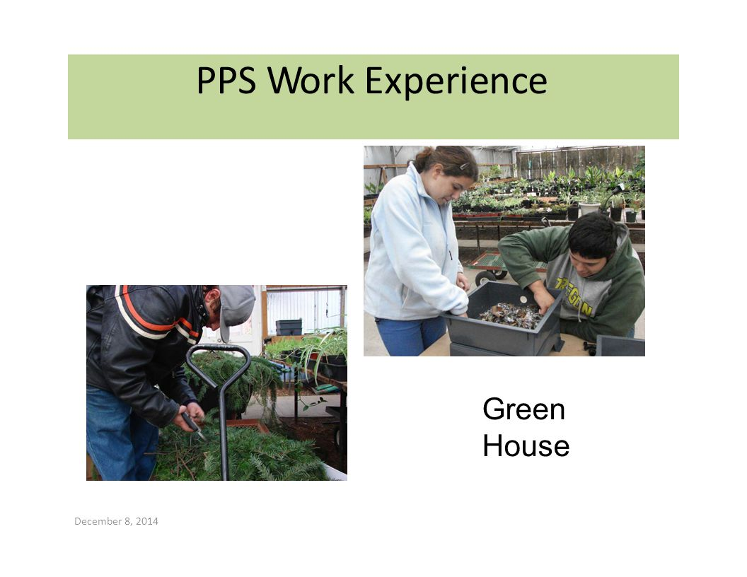 PPS Work Experience Green House December 8, 2014