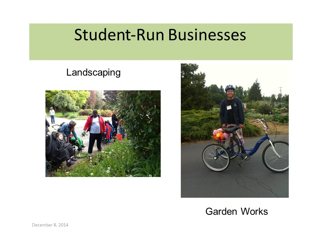 Student‐Run Businesses