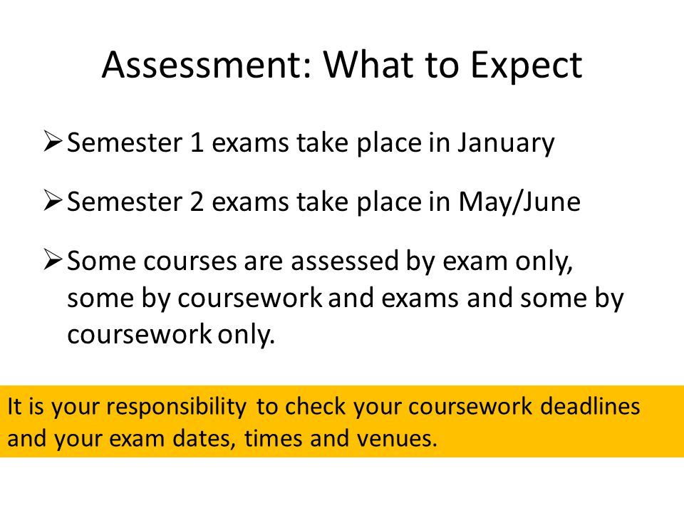 Assessment: What to Expect