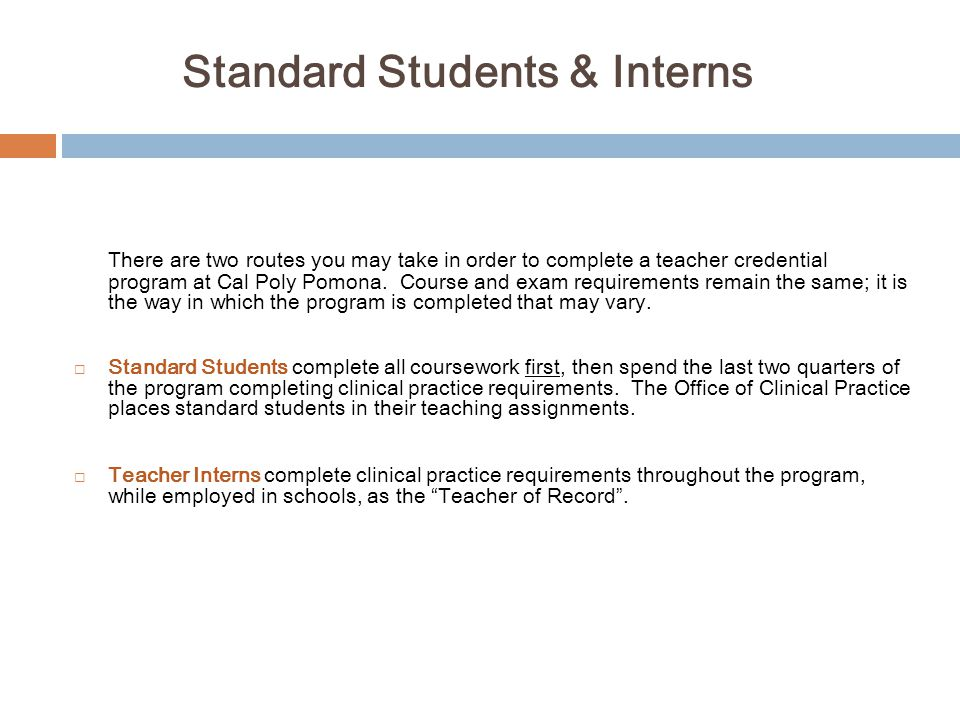Standard Students & Interns
