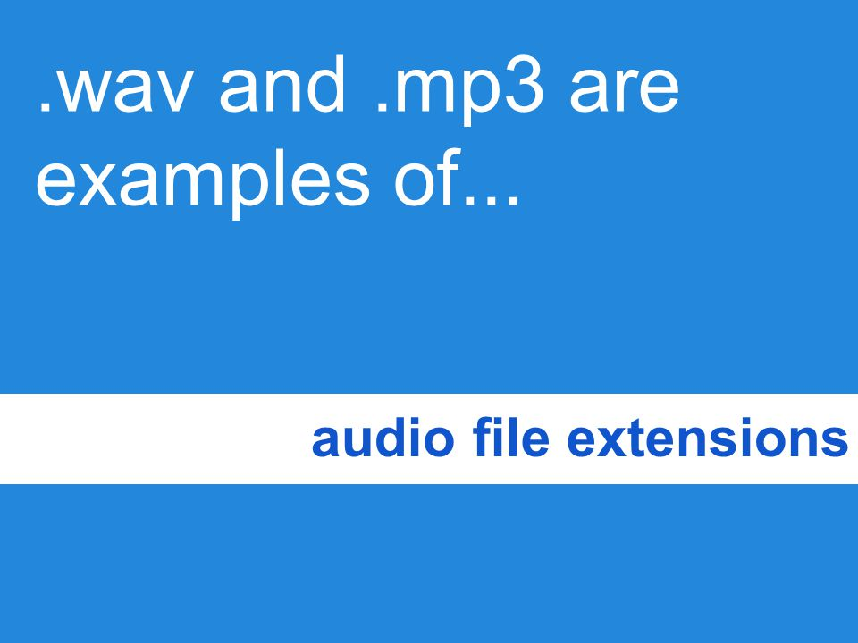 .wav and .mp3 are examples of...