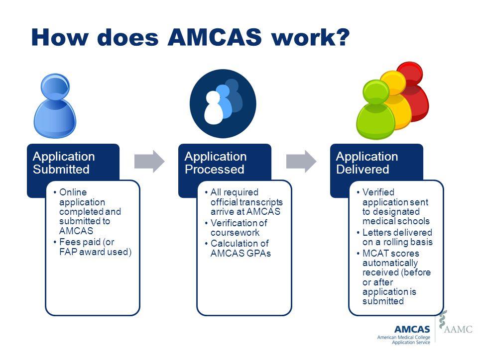 How does AMCAS work Application Submitted Application Processed