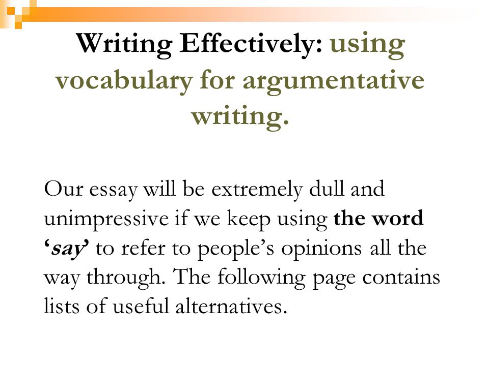 Essay Writing Vocabulary