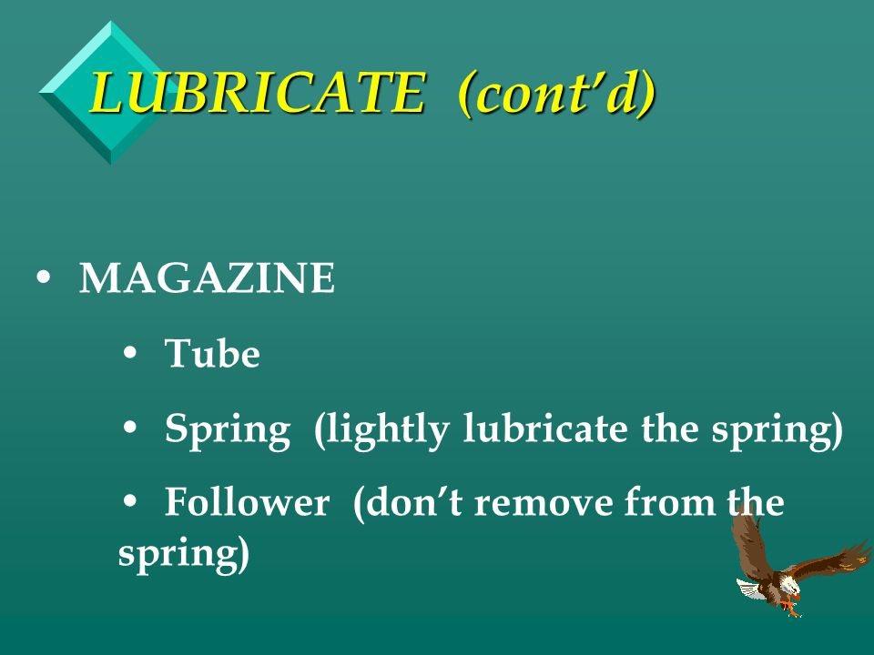 LUBRICATE (cont'd) MAGAZINE Tube Spring (lightly lubricate the spring)