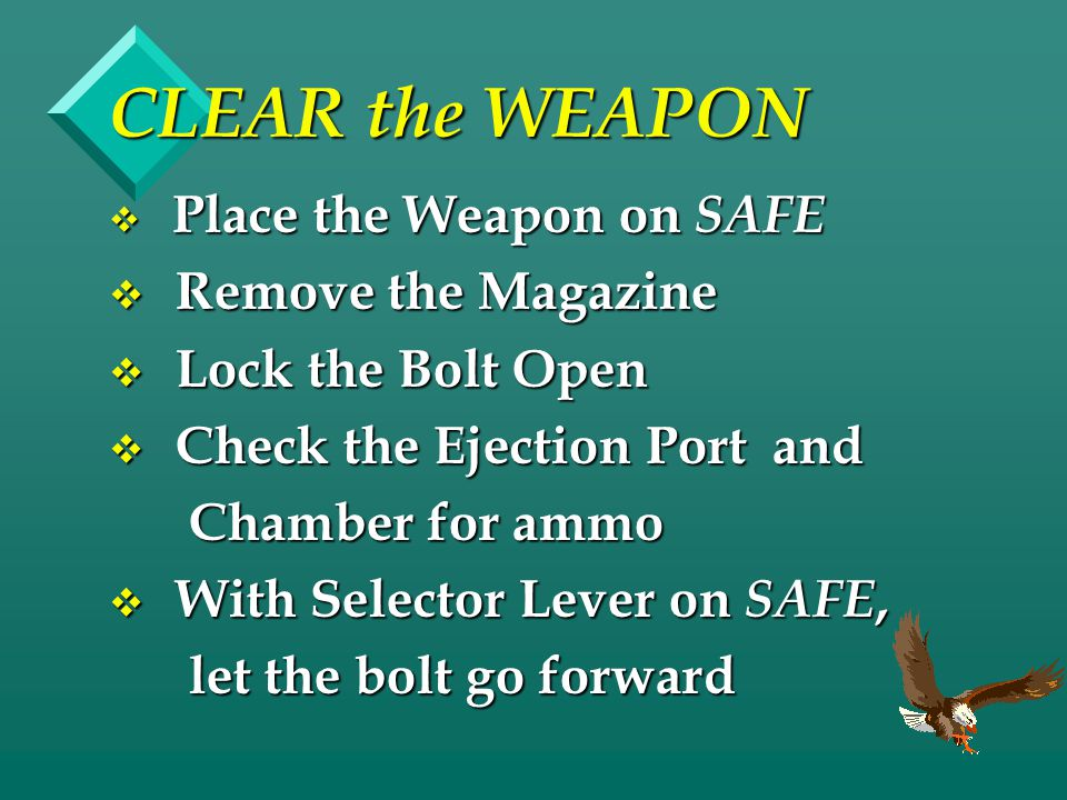 CLEAR the WEAPON Remove the Magazine Lock the Bolt Open