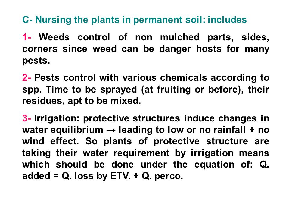 C- Nursing the plants in permanent soil: includes