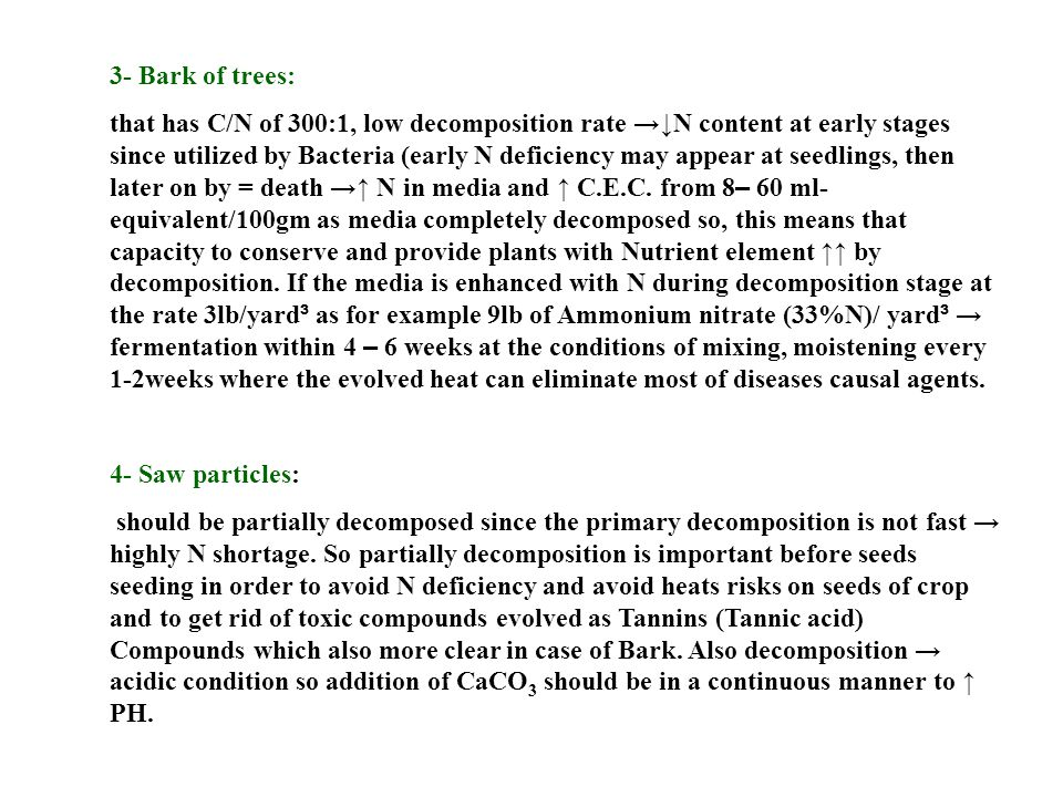 3- Bark of trees:
