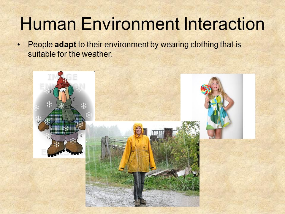 Human Environment Interaction