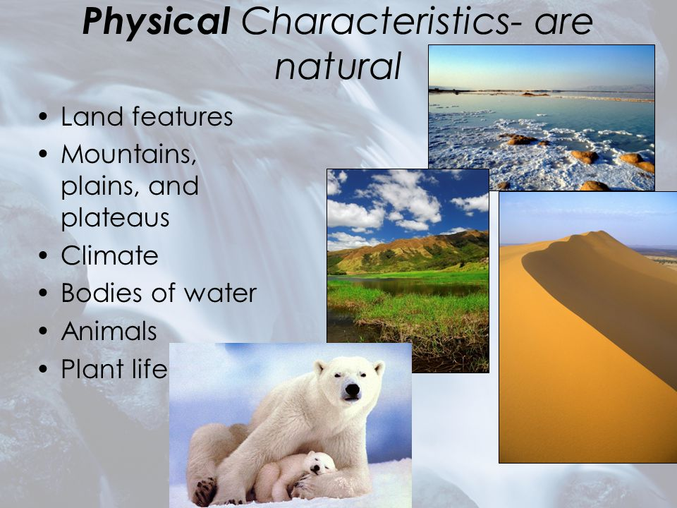 Physical Characteristics- are natural