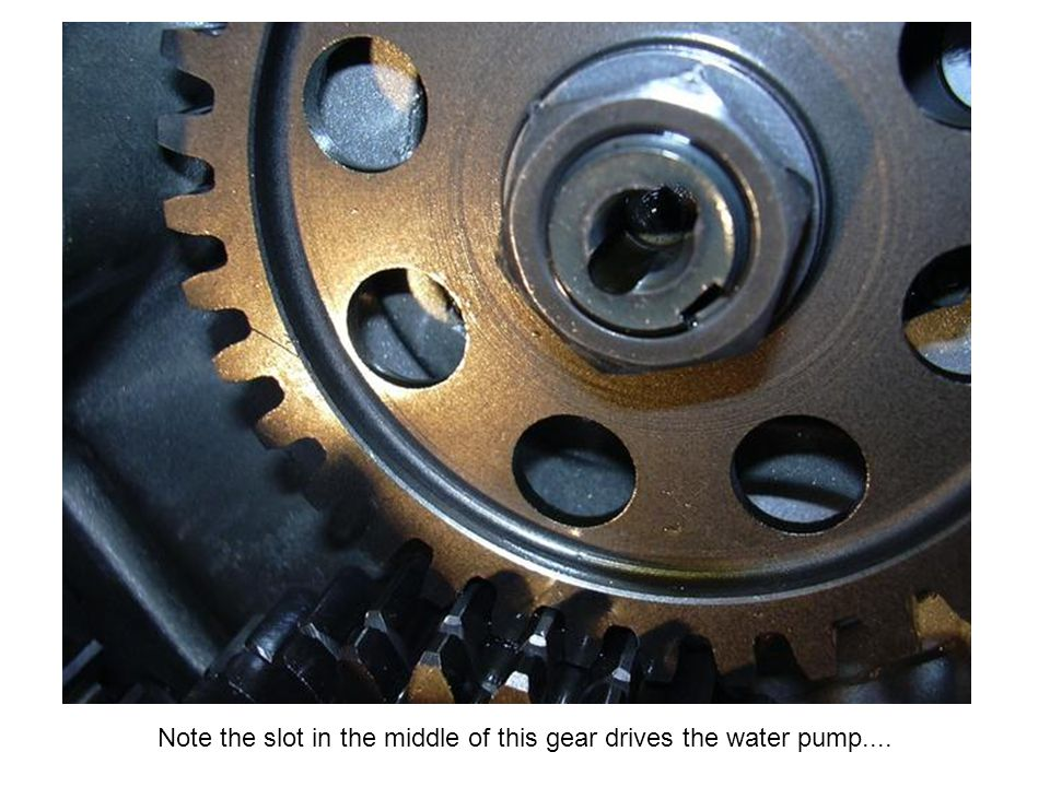 Note the slot in the middle of this gear drives the water pump....