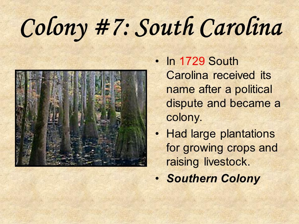 Colony #7: South Carolina