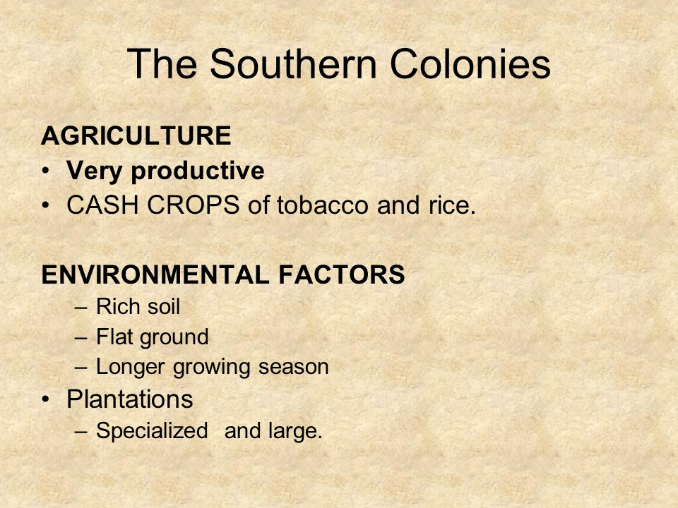 The Southern Colonies AGRICULTURE Very productive