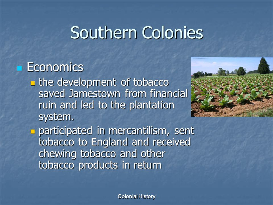 economic social and political aspects southern colonies Whats a social, political, and economic aspect of the new england, middle, and chesapeake colonies what were the southern.