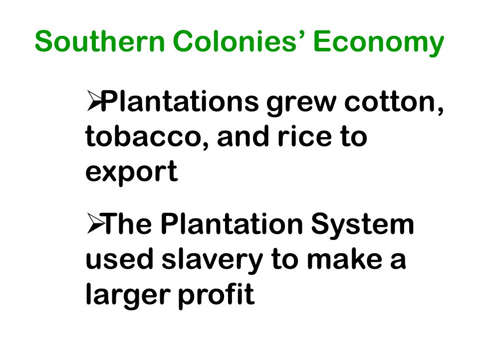 Southern Colonies' Economy