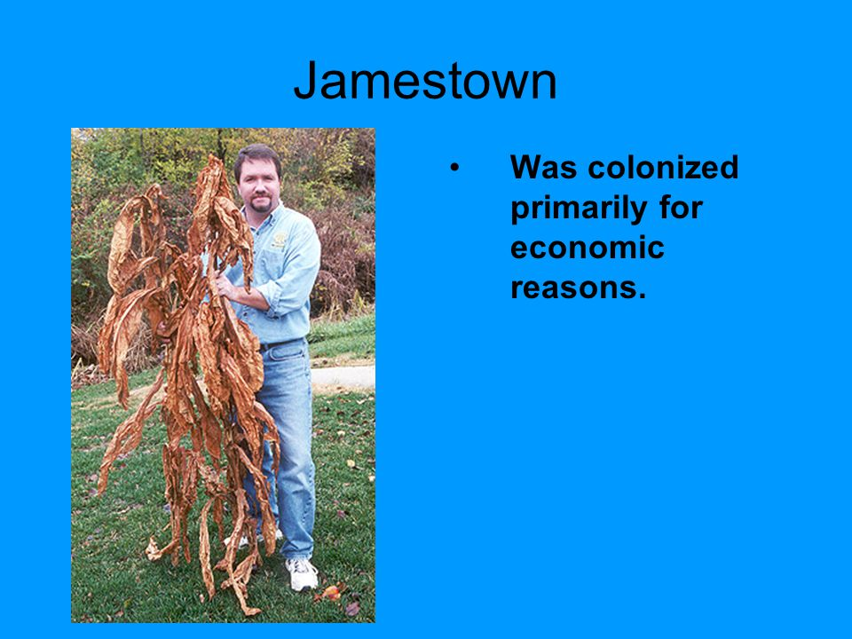 Jamestown Was colonized primarily for economic reasons.