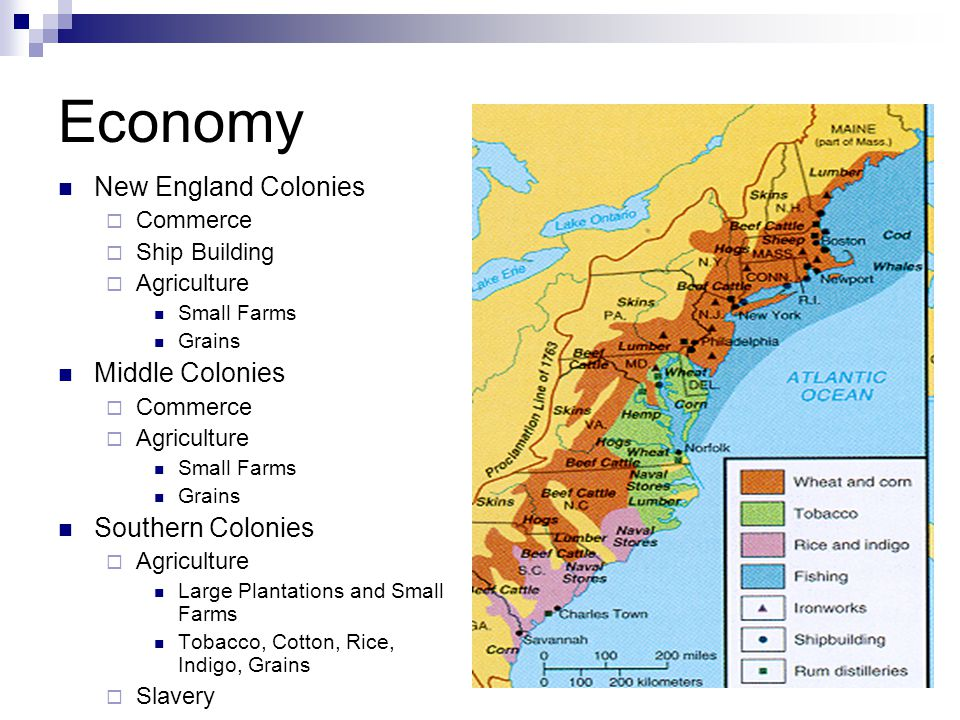 economy in all the south colonies