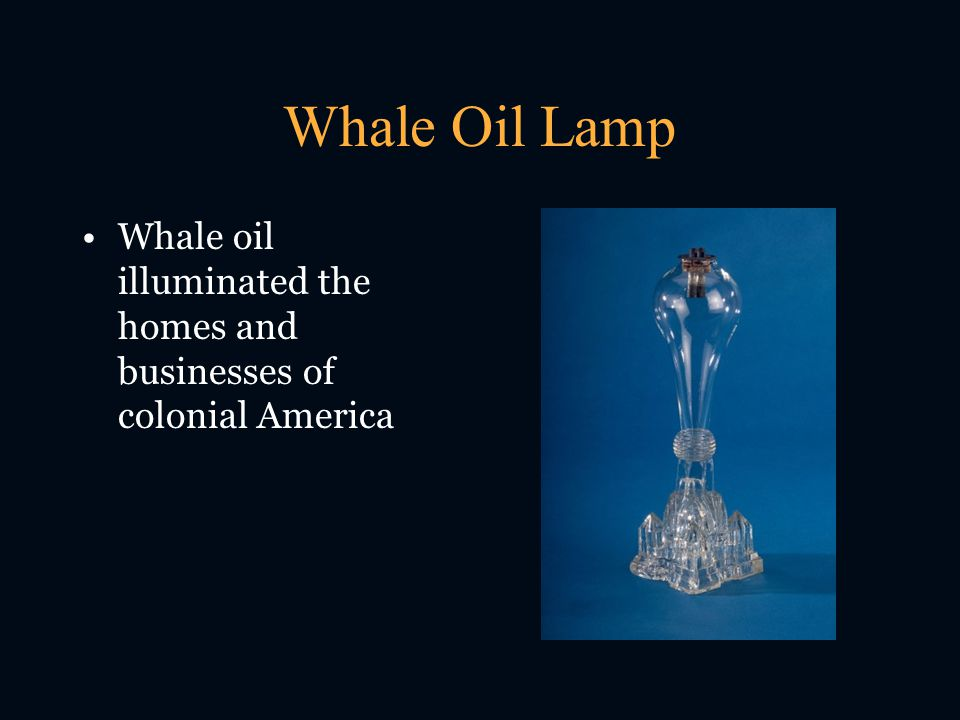 Whale Oil Lamp Whale oil illuminated the homes and businesses of colonial America