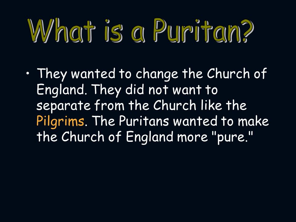 What is a Puritan