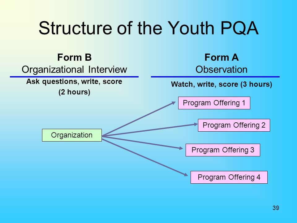 Structure of the Youth PQA
