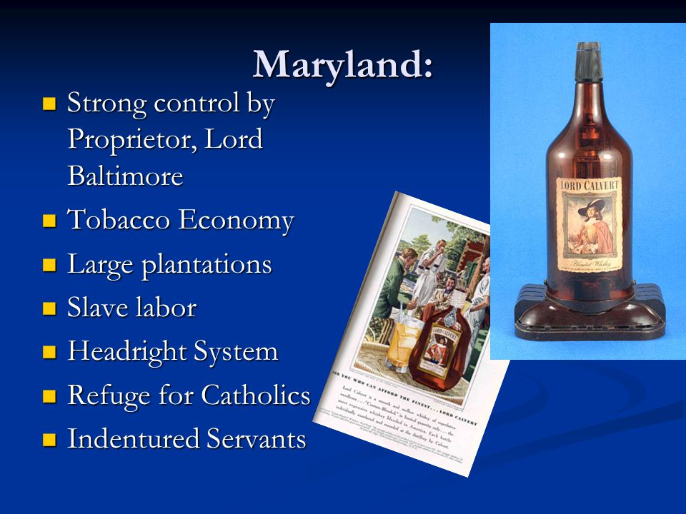 Maryland: Strong control by Proprietor, Lord Baltimore Tobacco Economy