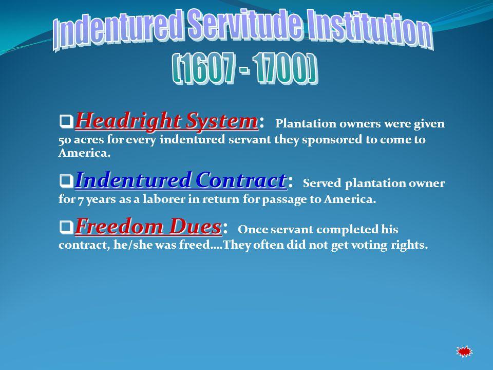 Indentured Servitude Institution
