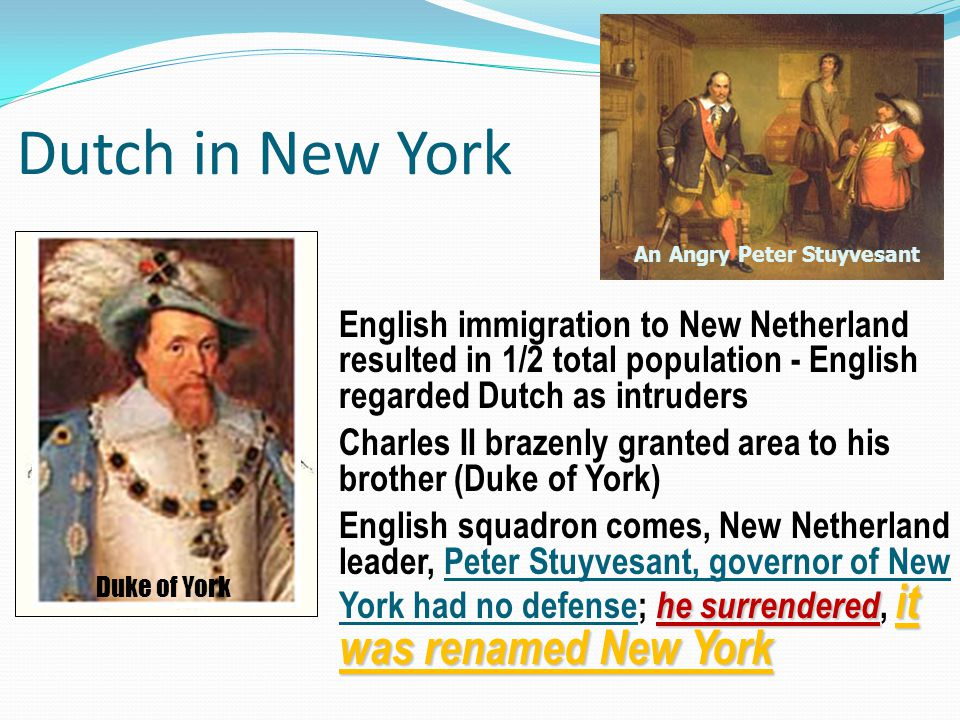 Dutch in New York An Angry Peter Stuyvesant.