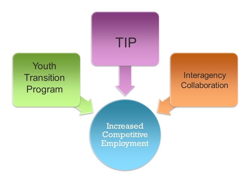 TIP Youth Transition Program Interagency Collaboration