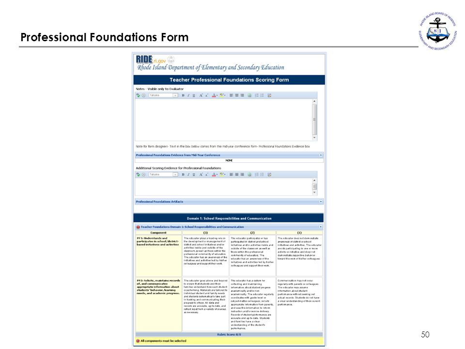 Professional Foundations Form