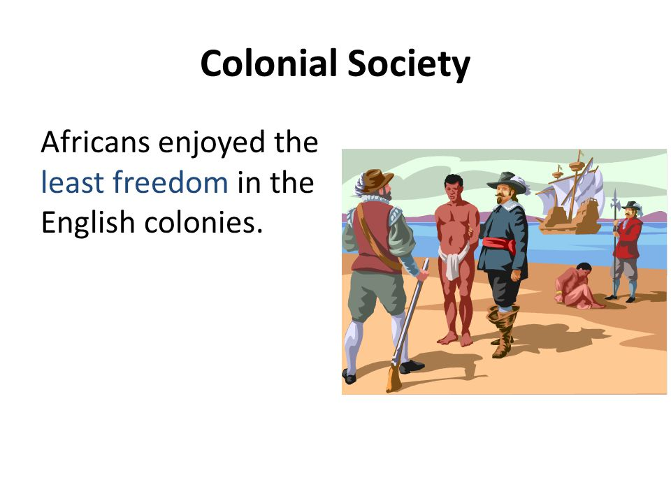 Colonial Society Africans enjoyed the least freedom in the English colonies.